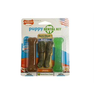 Nylabone Puppy Dental Pack 4 Count Petite