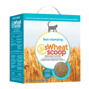 sWheat Scoop Fast Clumping Wheat-Based Cat Litter Bilingual Box 12.3LB